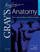Gray's Anatomy: The Anatomical Basis of Clinical Practice (Standring, S. - Healy, J. - Johnson, D.)