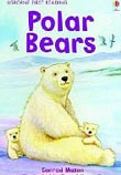 First Reading 4: Polar Bears (Mason, C.)