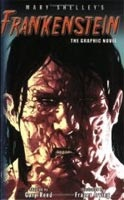 Frankenstein (Graphic Novel) (Shelley, M. W. - Irving, F. (ill.))