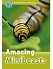 Oxford Read and Discover 3 Amazing Minibeasts (Geatches, H. - Advisor, C. - Clegg, J.)