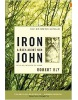 Iron John: A Book About Men (Bly, R.)