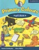 Primary Colours 4 Pupil's Book (Littlejohn, A. - Hicks, D.)