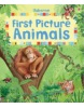 First Picture: Animals (Brooks, F.)