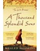A Thousand Splendid Suns (Hosseini, K.)