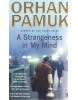 A Strangeness in My Mind (Pamuk Orhan)
